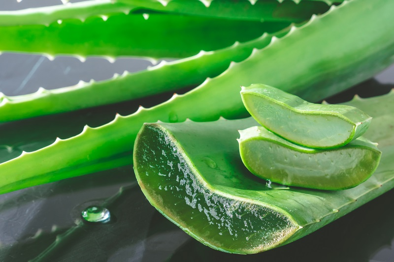 Aloes sok
